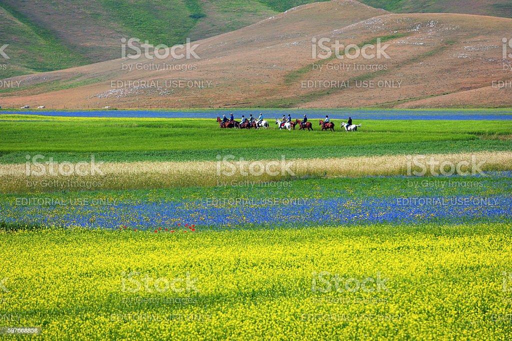 Horseriders on Piano Grande di Castelluccio (Italy) stock photo