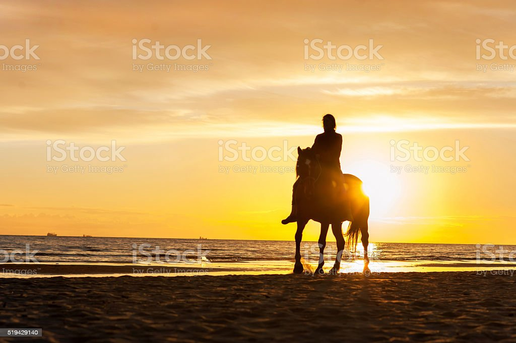 Horseriding at the beach on sunset background. Multicolored outdoors image. stock photo