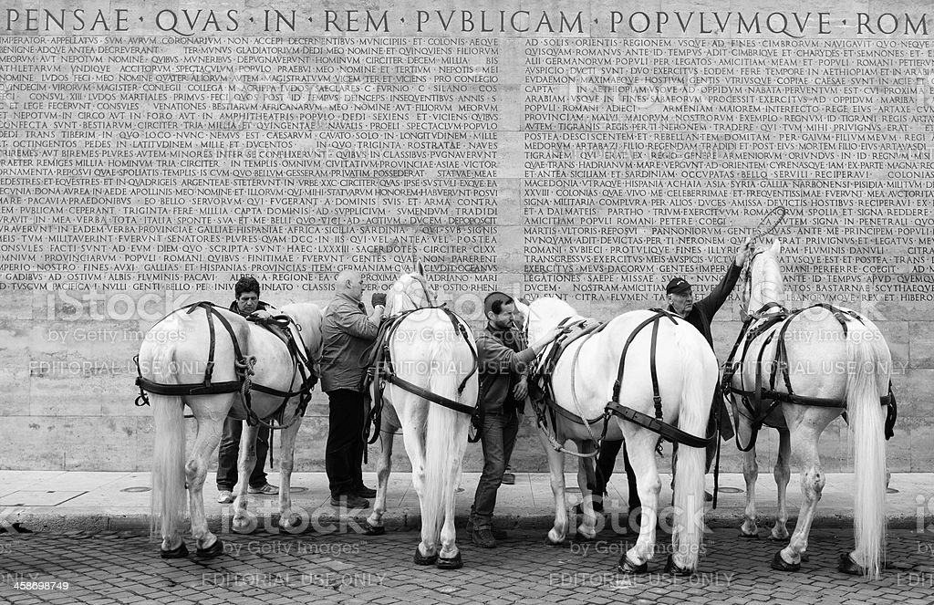 Horses and Ara Pacis stock photo