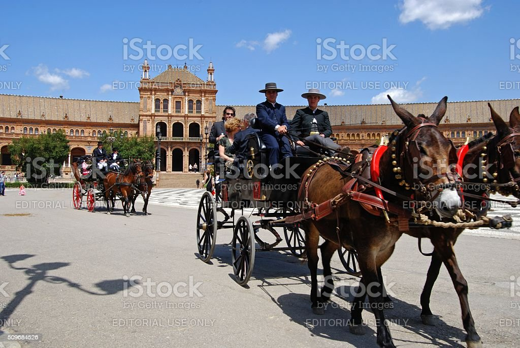 Horses and carriages in the Plaza de Espana, Seville. stock photo
