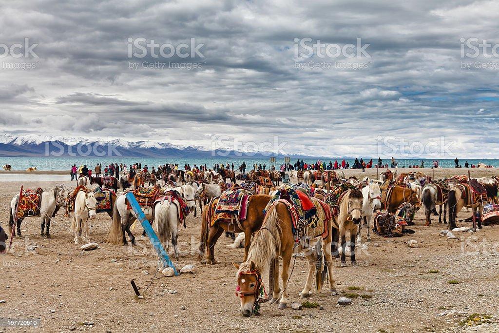 Horses and crowd at the Namtso Lake stock photo