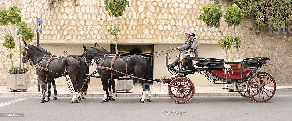 Horses Carriage stock photo