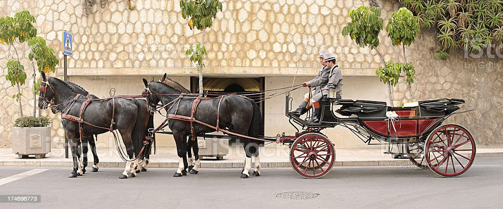Horses Carriage stock photo