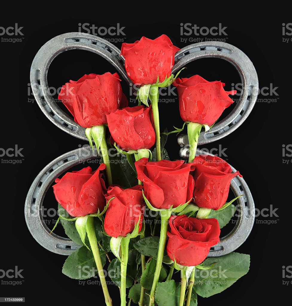 Horseshoes and Wet Red Rose Bouquet on Black Background royalty-free stock photo