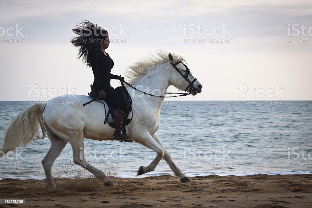 Horsewoman mediterranea stock photo