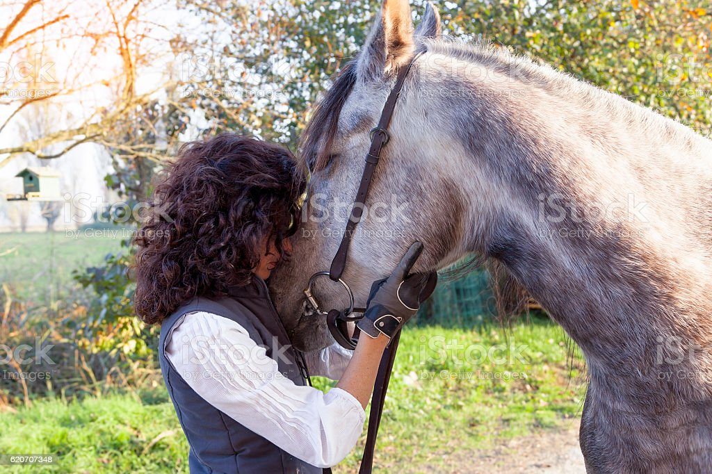 horsewoman rides his horse to the country roads in autumn stock photo