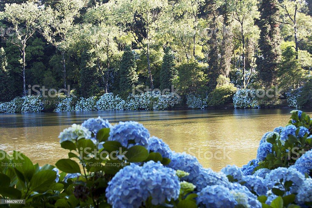 Hortense lake stock photo