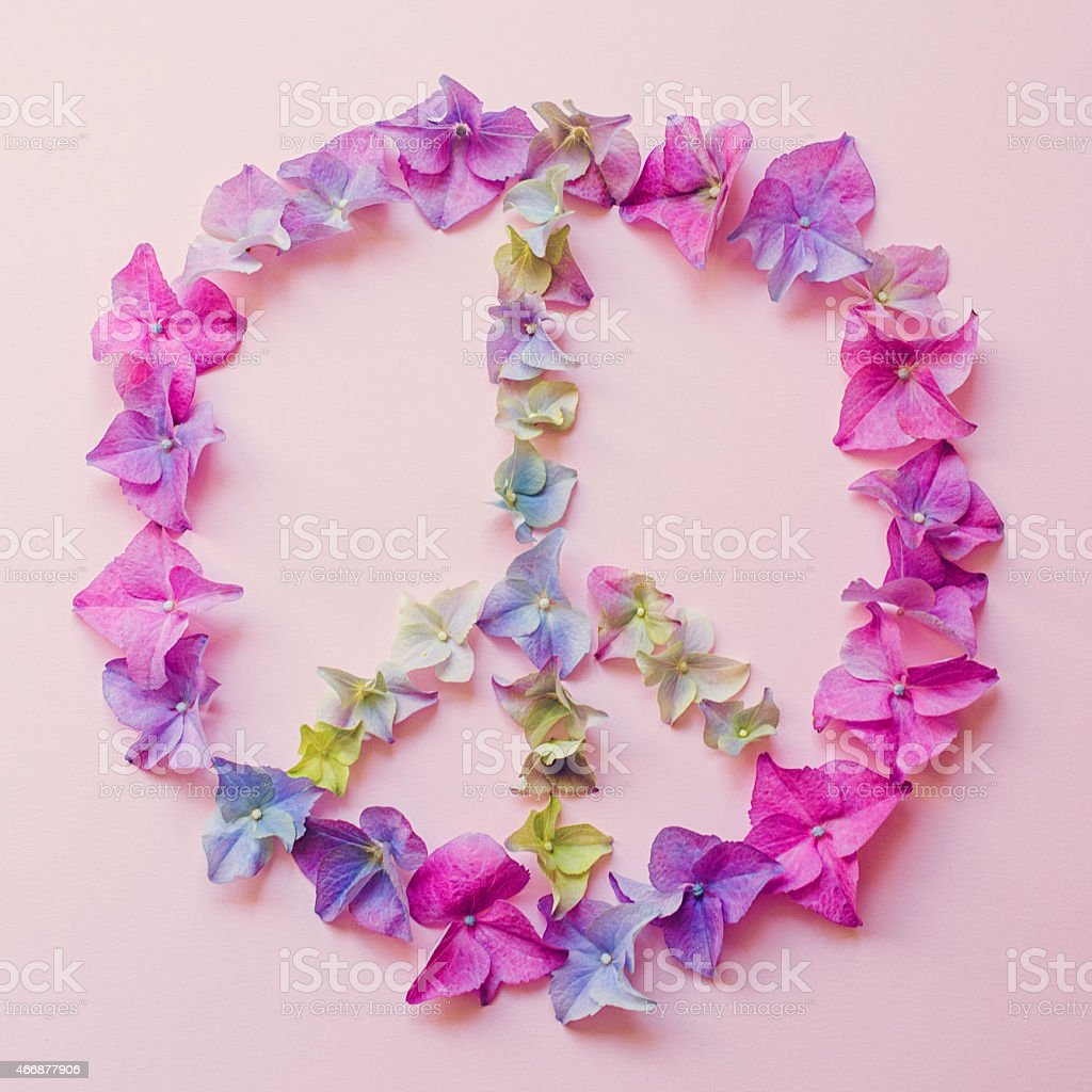 Hortensia - Hydrangea Spring flowers in peace shape stock photo