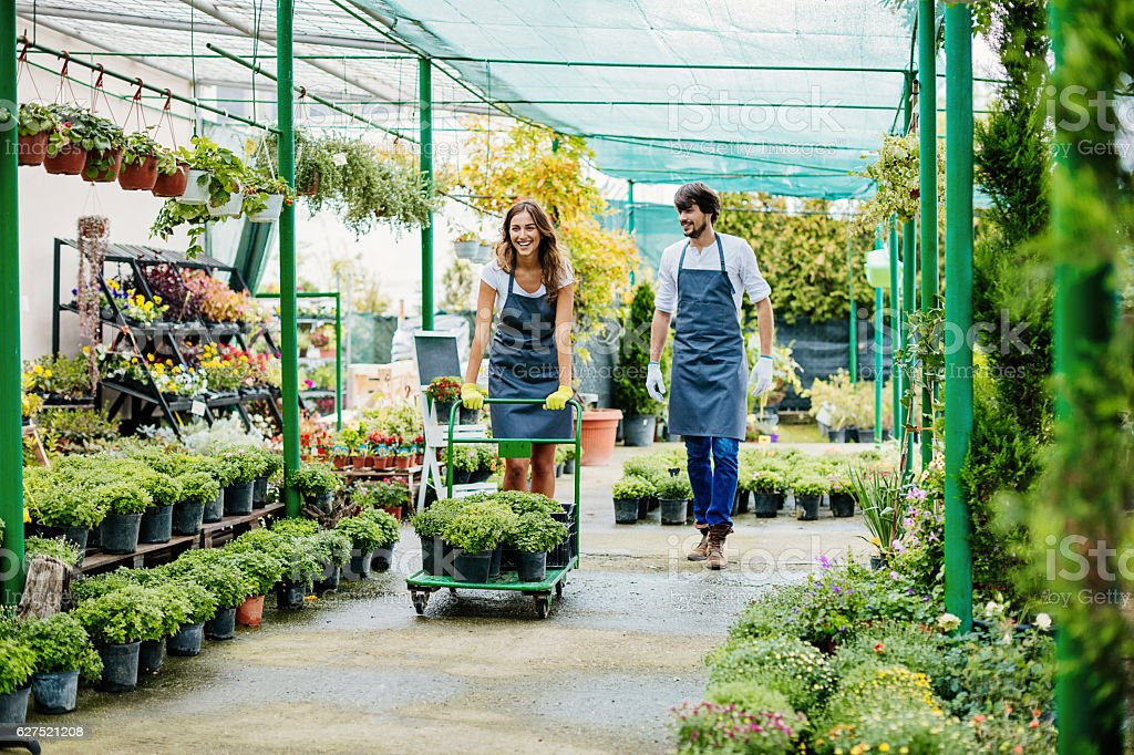 Horticulture business stock photo