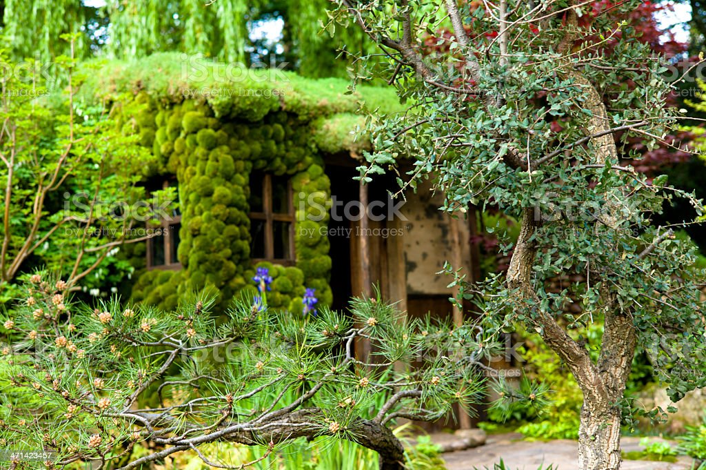 horticulture display: house with moss and exotic plant arrangement stock photo