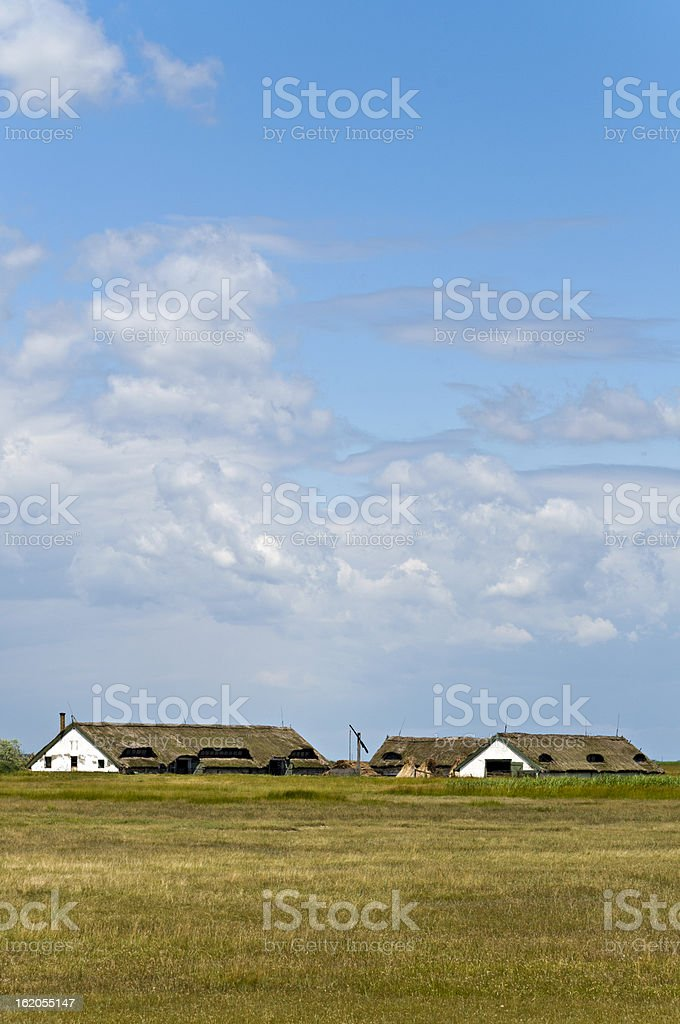 Hortobagy National Park royalty-free stock photo