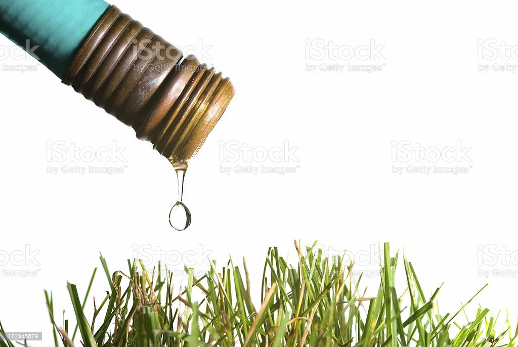 Hose and water drop above grass royalty-free stock photo