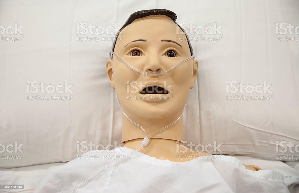 Hospital training dummy lying in bed center of frame stock photo