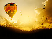 Hot air balloon flying with birds in sunset sky,