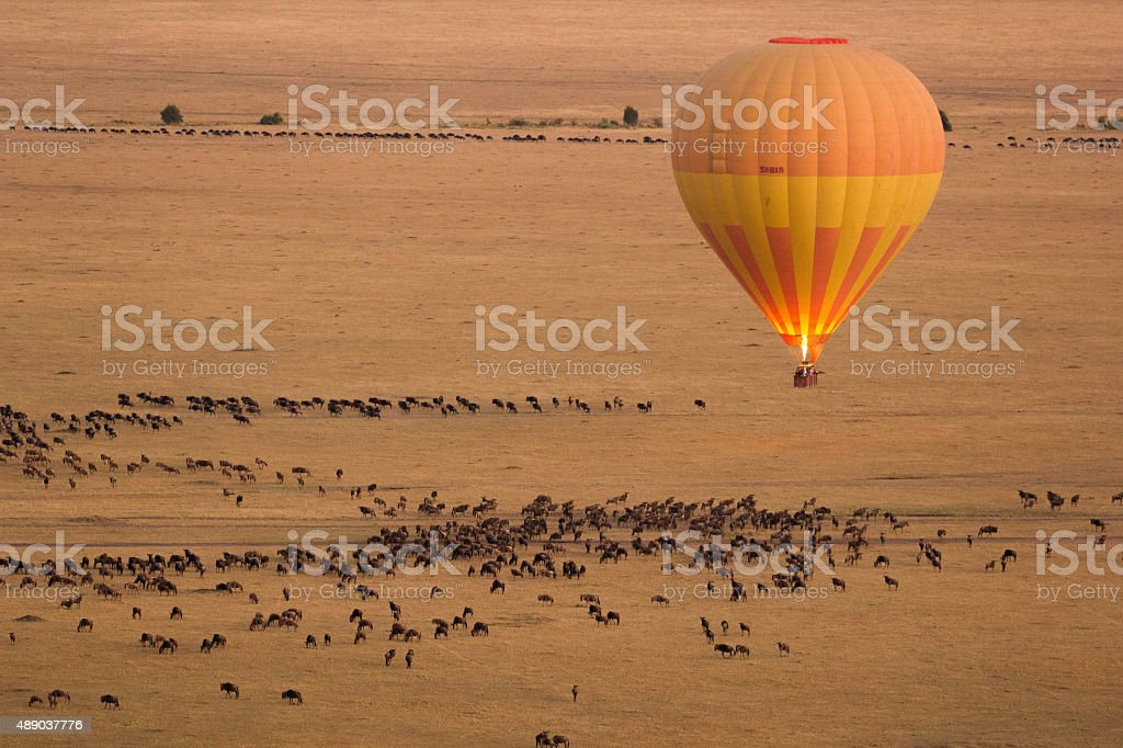 Hot Air Balloon in Masai Mara stock photo