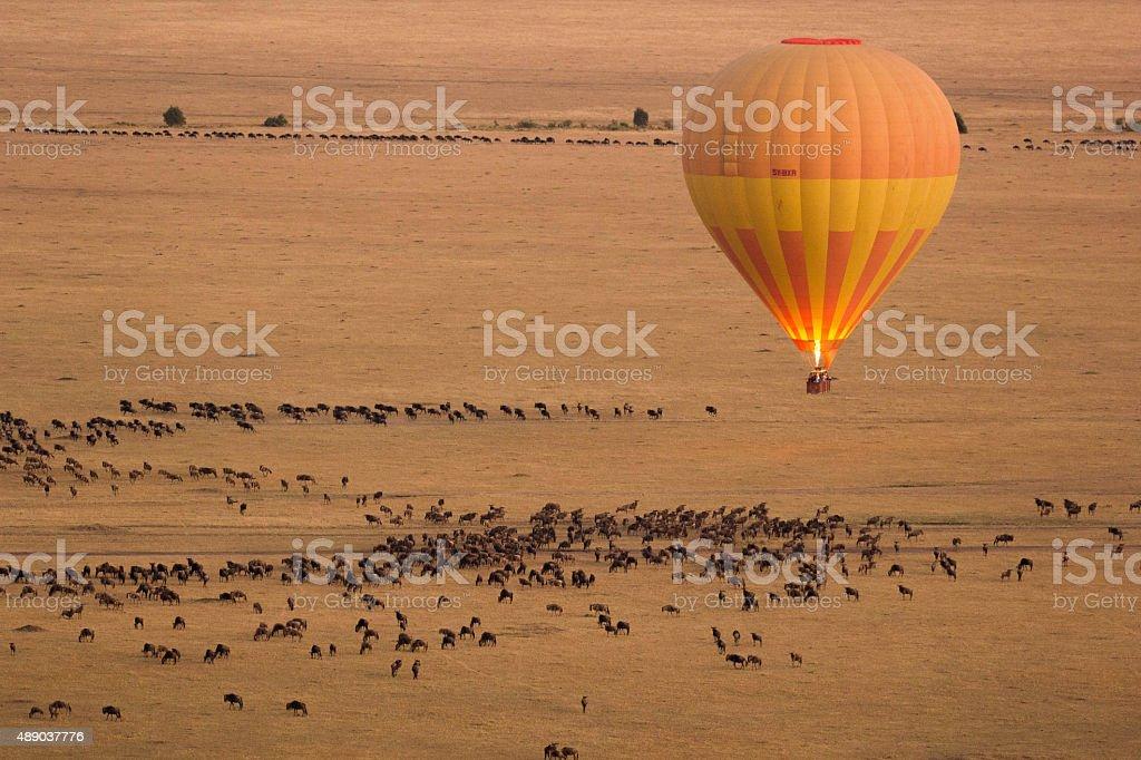 Hot Air Balloon in Masai Mara stock photo