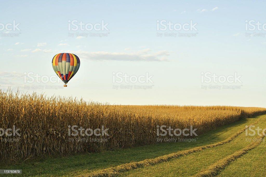 Hot air balloon over corn field in Pennsylvania royalty-free stock photo