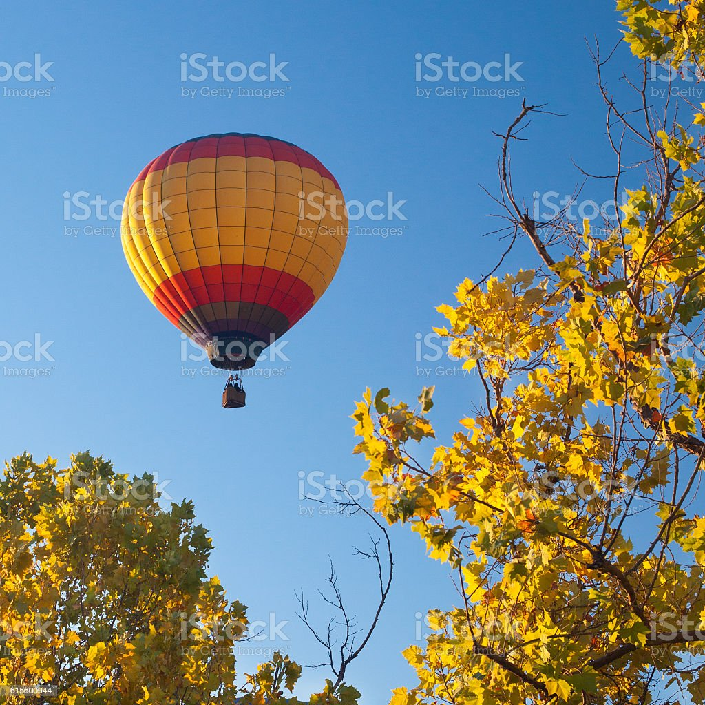 Hot Air Balloon Over Trees stock photo
