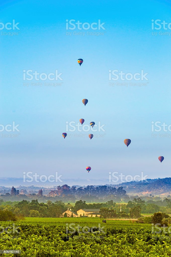 Hot air balloons over Napa Valley stock photo