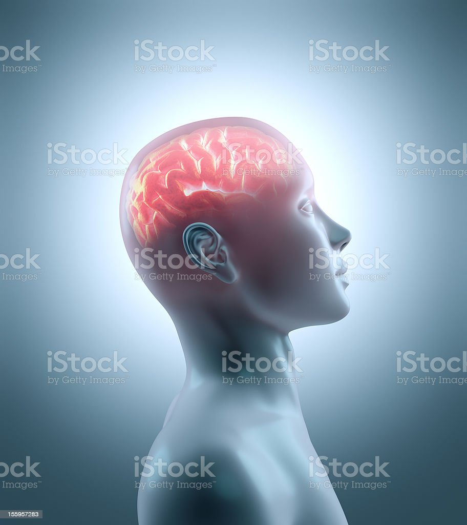 Hot brain royalty-free stock photo