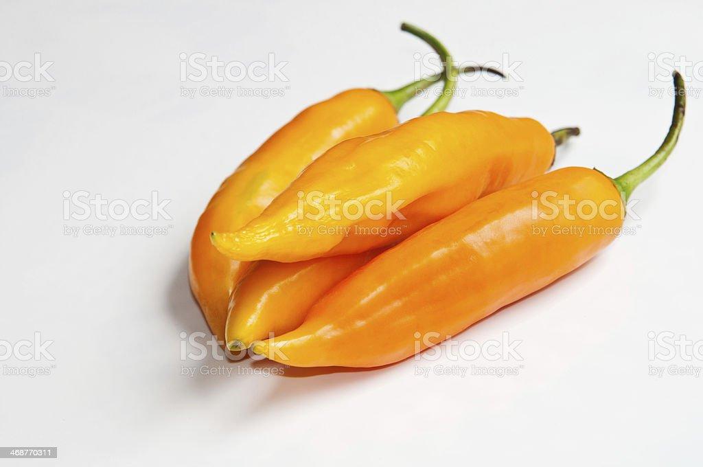 Hot chili 'Aji amarillo'. stock photo