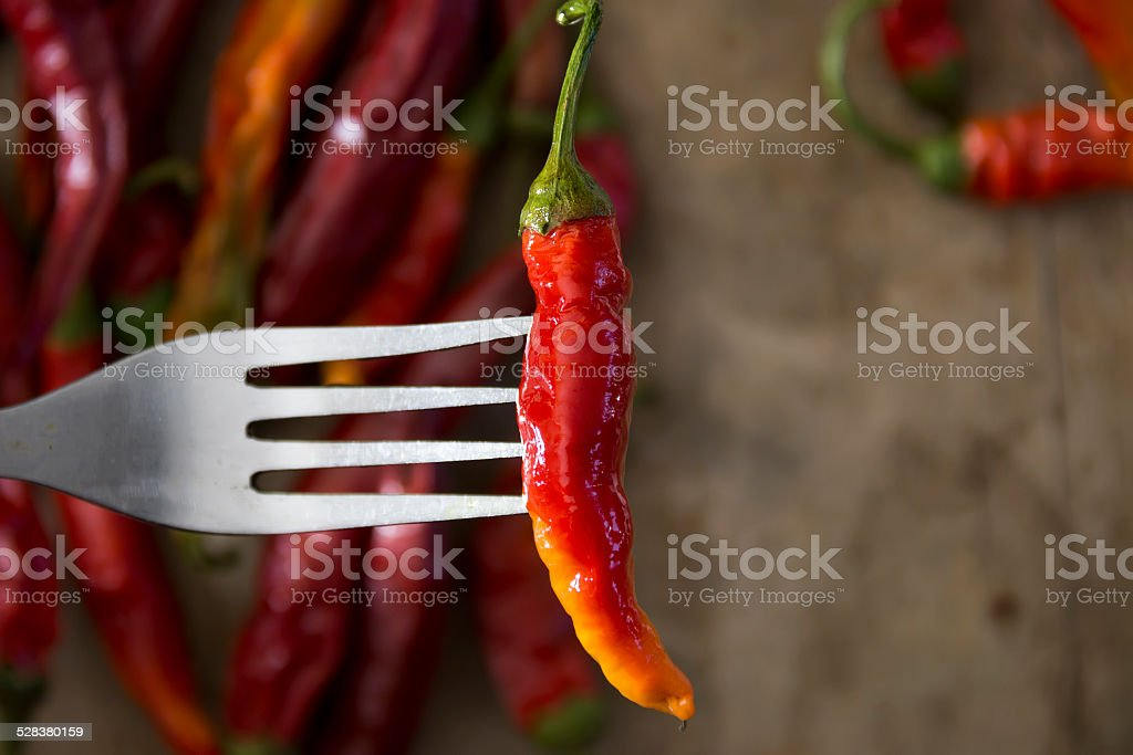 hot chilly on fork stock photo