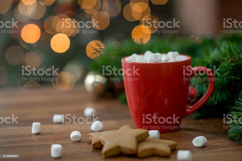 Hot Chocolate and Gingerbread stock photo