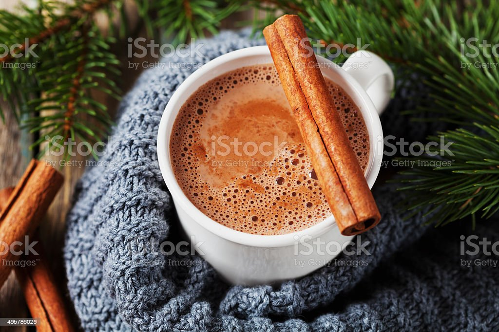 Hot chocolate or cocoa with fir tree and cinnamon sticks stock photo