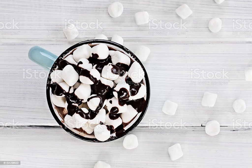 Hot Chocolate with Chocolate Sauce and Marshmallows stock photo