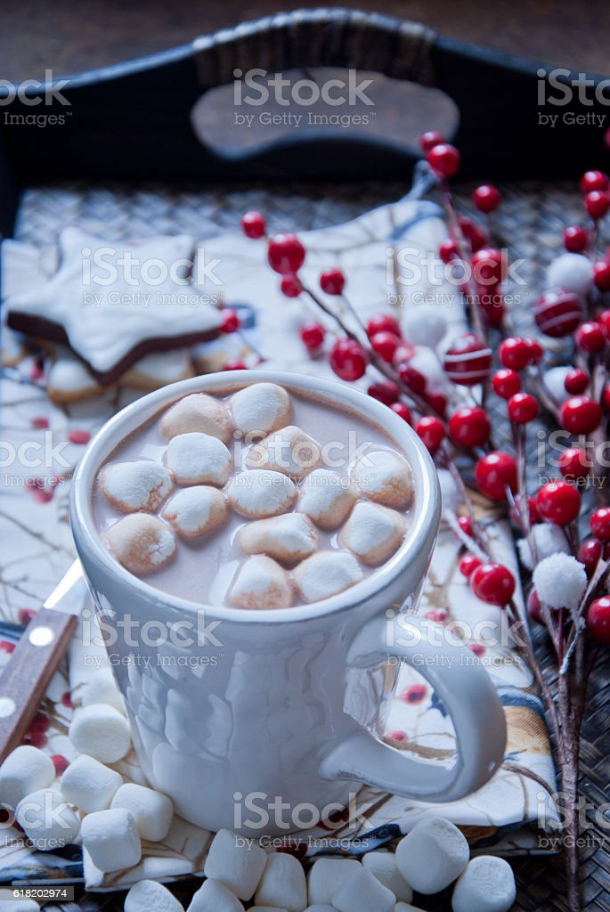 Hot chocolate with marshmallows at Christmas Time stock photo