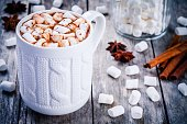 hot  chocolate with marshmallows