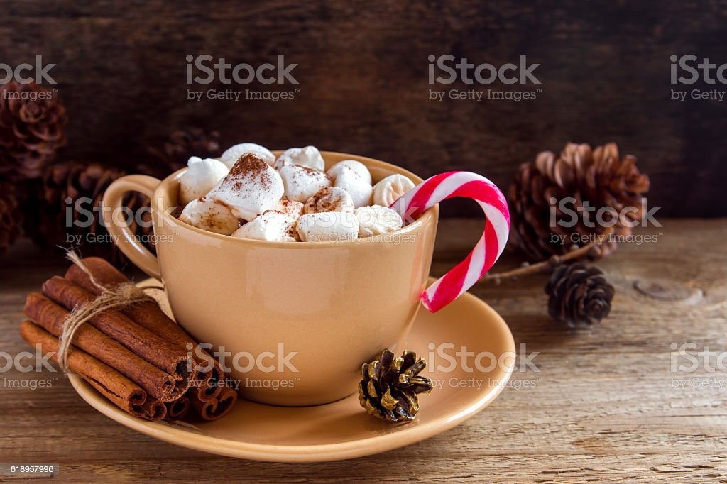 Hot chocolate with peppermint cane stock photo