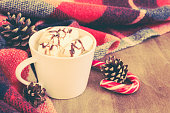 Hot Cocoa or coffee with marshmallows and cozy warm blanket.