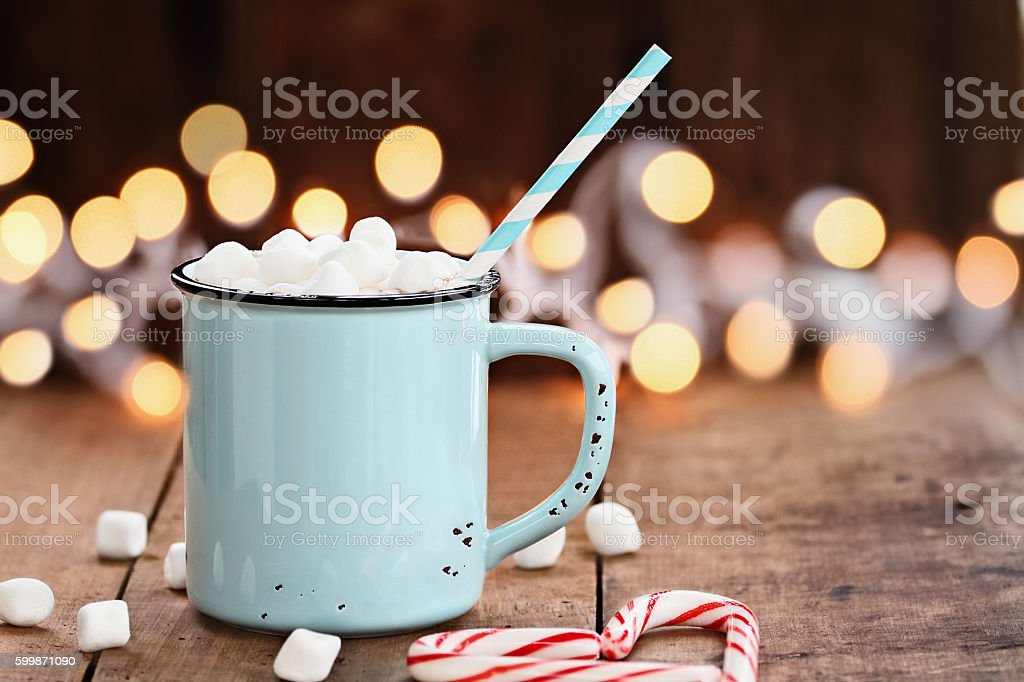 Hot Cocoa with Marshmallows stock photo