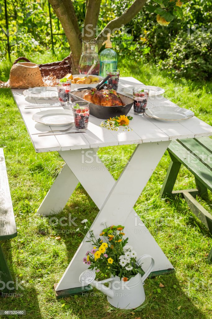 Hot dinner with potatoes and chicken served in the garden stock photo
