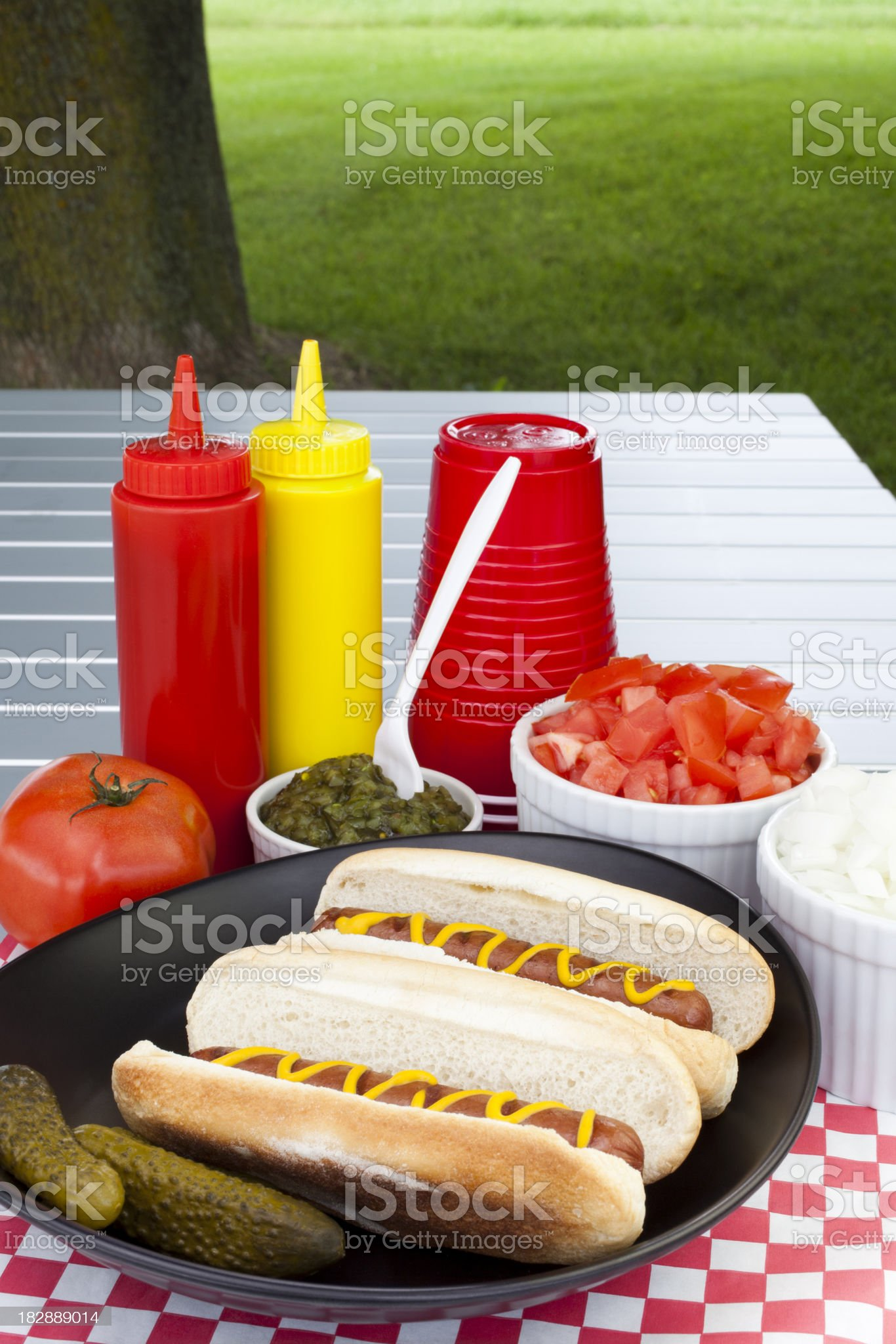 Hot Dogs and Condiments royalty-free stock photo