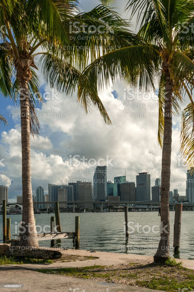 Hot in Miami royalty-free stock photo