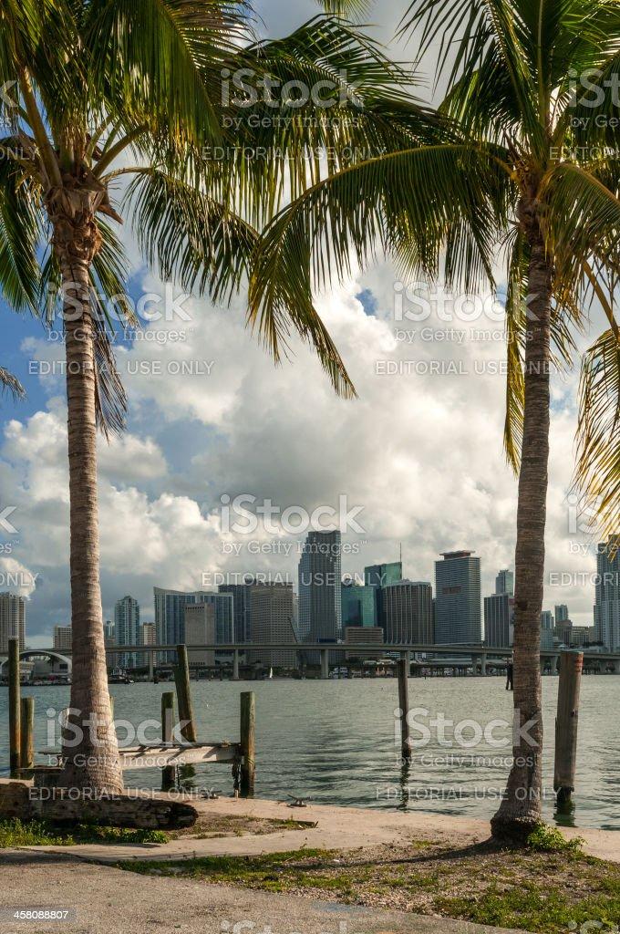 Hot in Miami stock photo