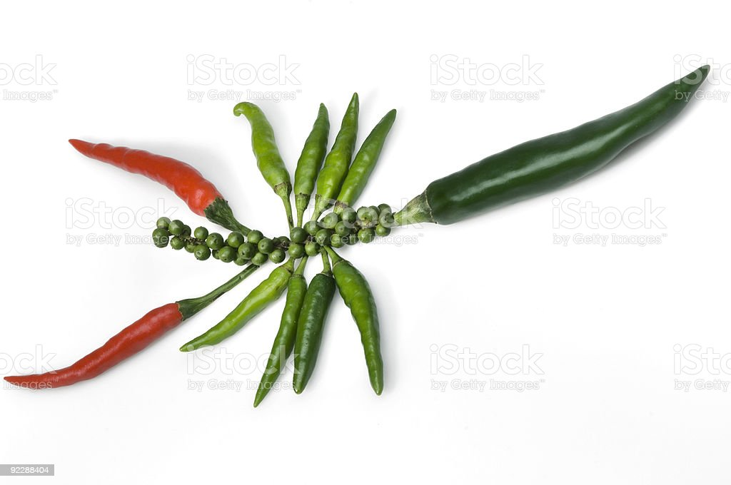 hot pepper can bite stock photo