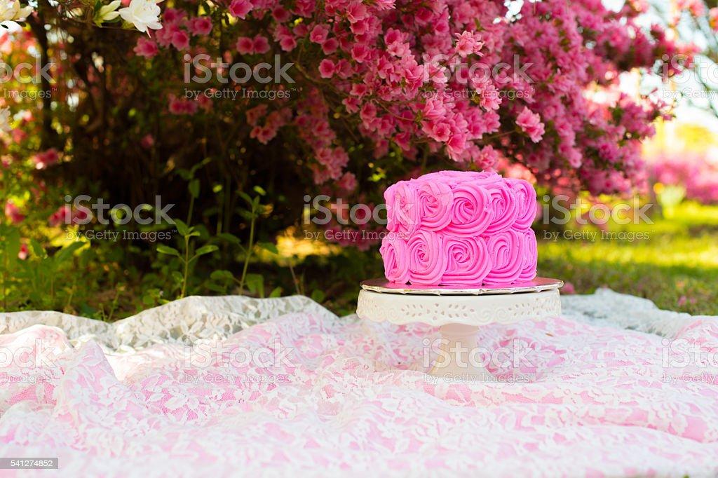 Hot Pink First Birthday Smash Cake stock photo
