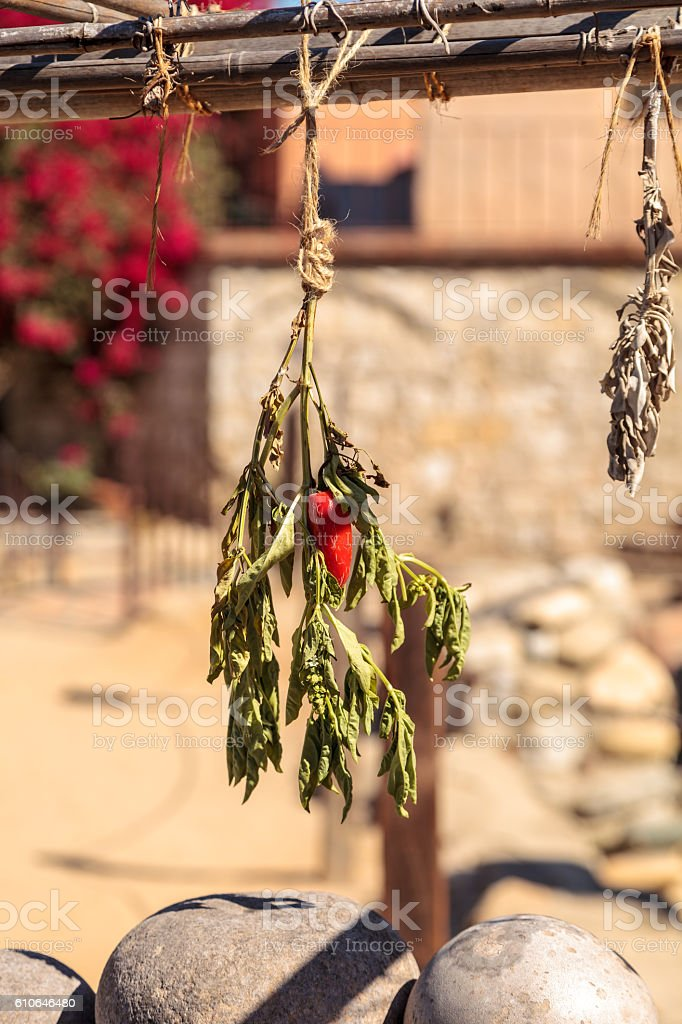 Hot red pepper dries stock photo