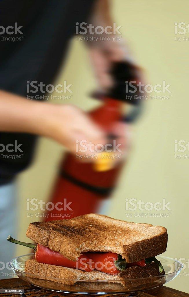 Hot Sandwich royalty-free stock photo