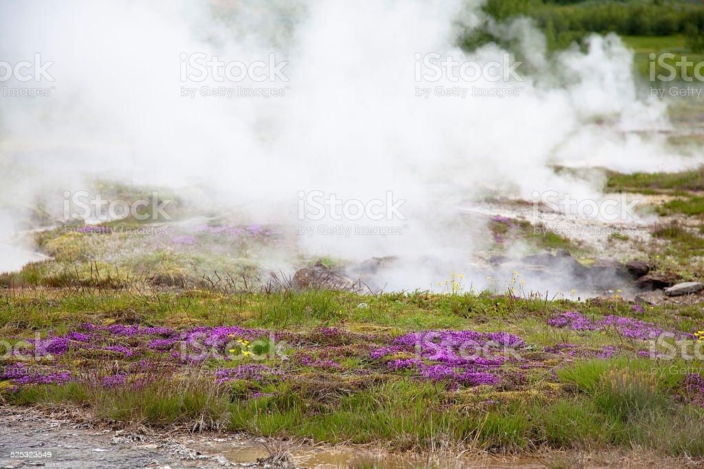 Hot spring Iceland stock photo