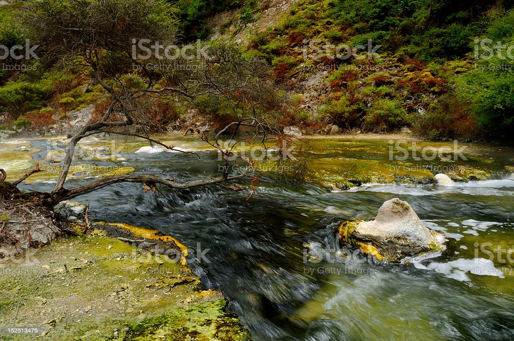 Hot spring with mineral sediments, Waimangu Volcanic Valley stock photo