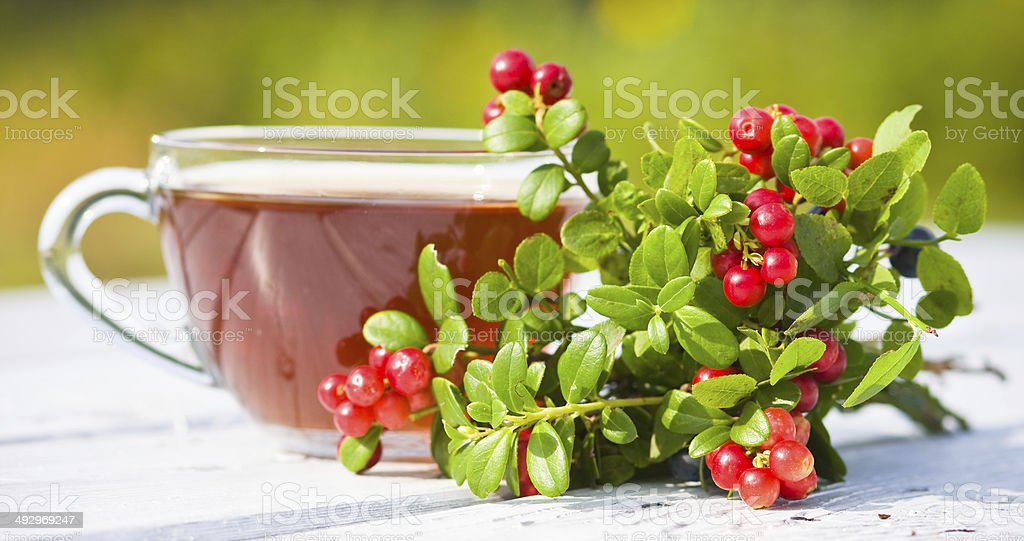 hot tea and beries. Focus on berry royalty-free stock photo