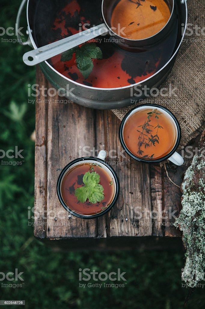 hot tea on a fire stock photo