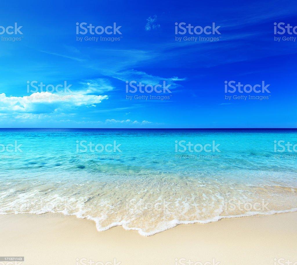 Hot Tropical Sandy Beach - Ocean Shore royalty-free stock photo