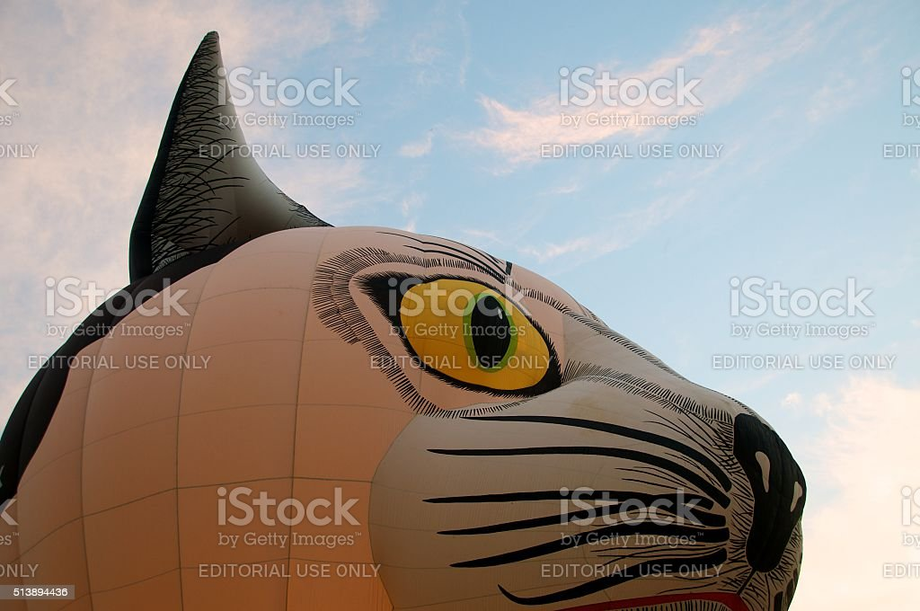 Hot-air balloon in the shape of a cat's head. stock photo