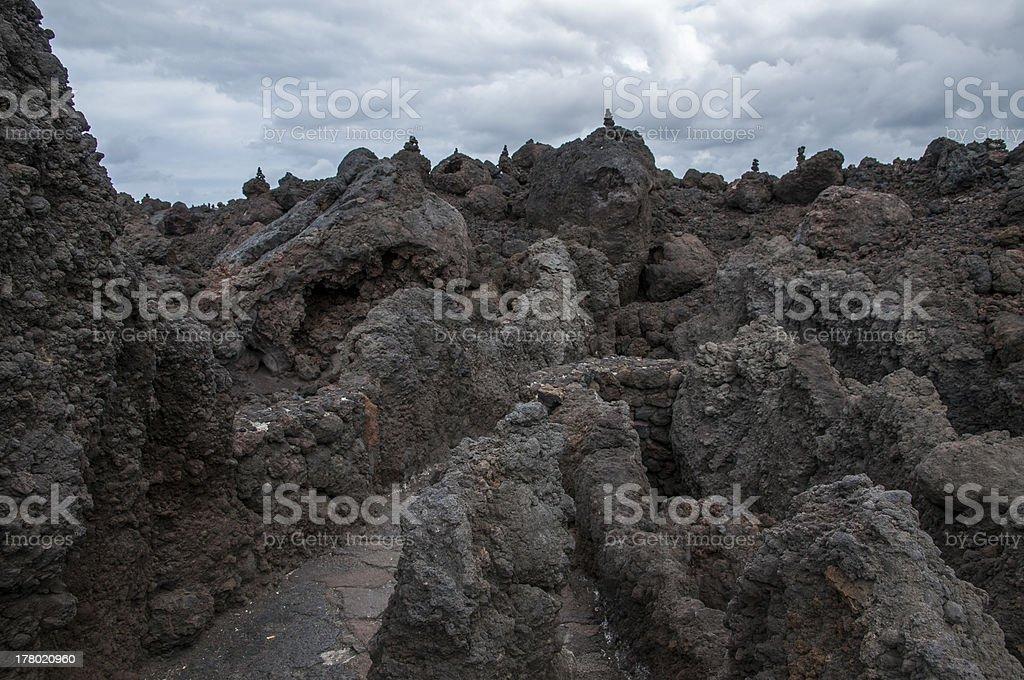 hotbeds of Lanzarote stock photo