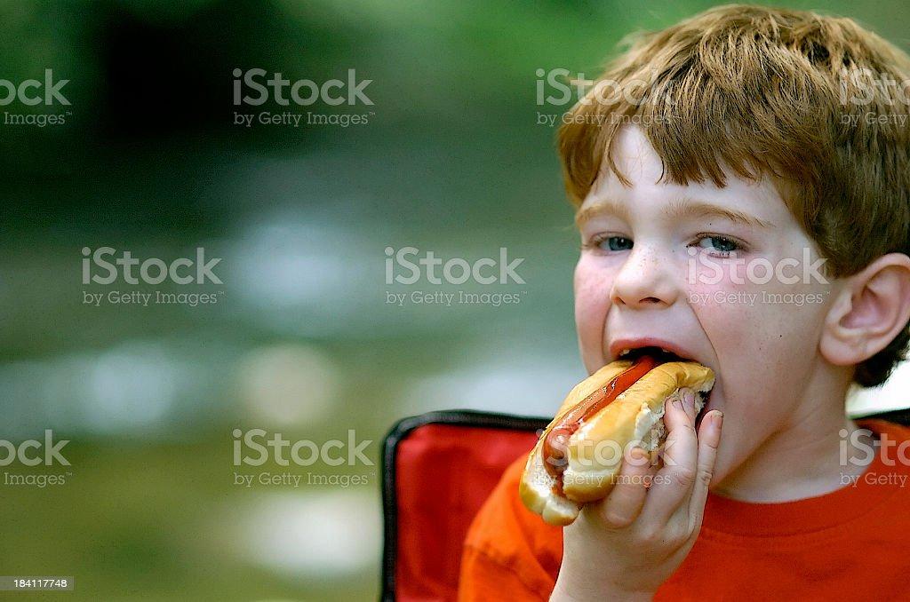 Hotdog #2 royalty-free stock photo